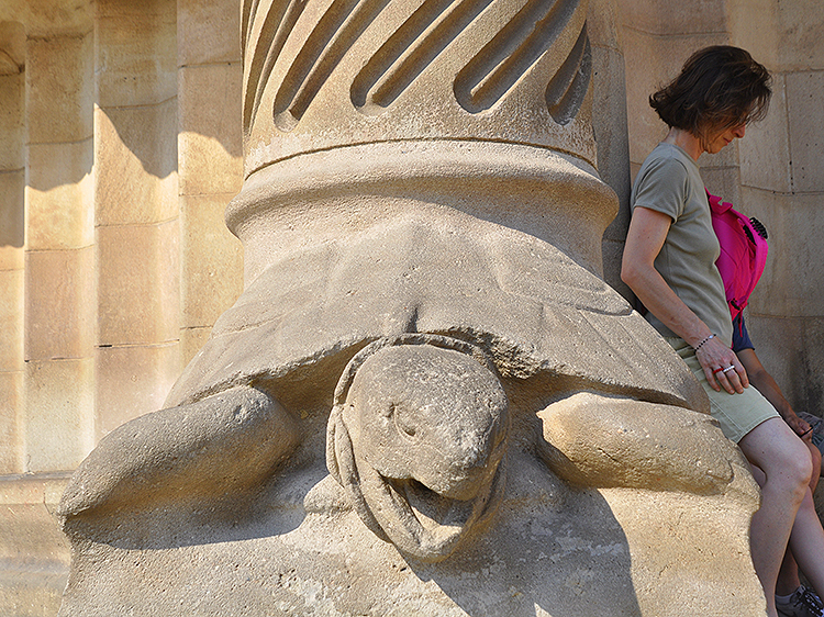 Tortugues-Sagrada-Familia2-040118